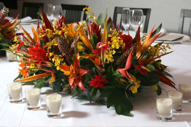 flores-tropicais